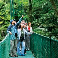 Monteverde Canopy Tour and Hanging Bridges