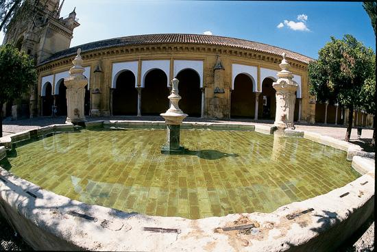 Mezquita Courtyard